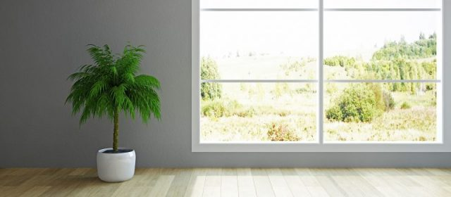 Replacing the Windows in Your Home? Consider Double Glaze Windows